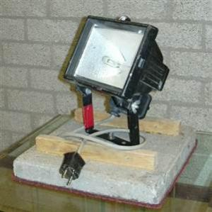 Halogeen Lamp