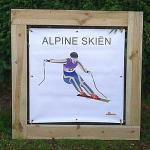 Olympisch Alpine Skien