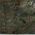 camouflage net 1