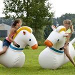 paarden race 3