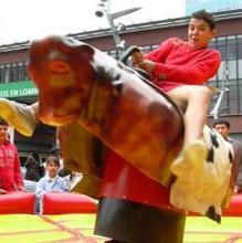 Rodeo stier attractie huren