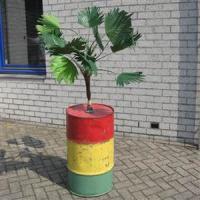 caribischeton met palm 1