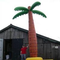 palm opblaasbaar (1)